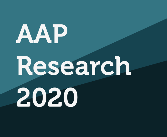 LAUNCH OF THE CALL FOR PROJECTS AAP2020