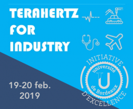 Terahertz For Industry