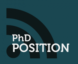 LAPHIA POST-DOC POSITION : Biocompatible and targeted ultra-small Organic Nanoparticles (ONPs) with red-emission for two-photon bioimaging